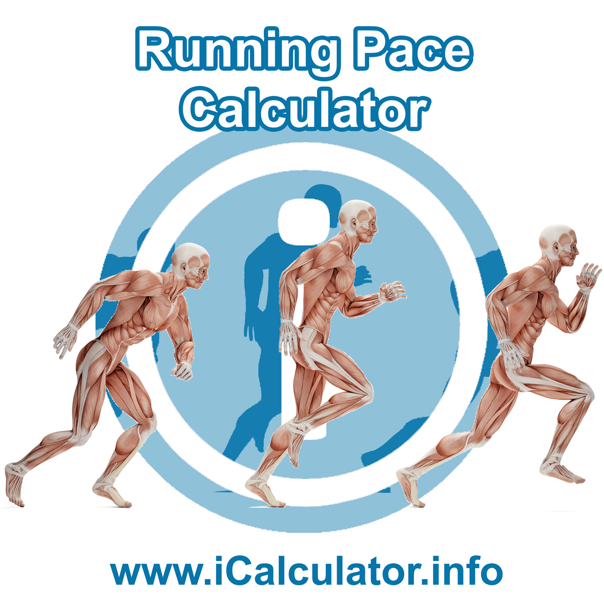 Use the Pace Calculator to create and manage a healthy running plan