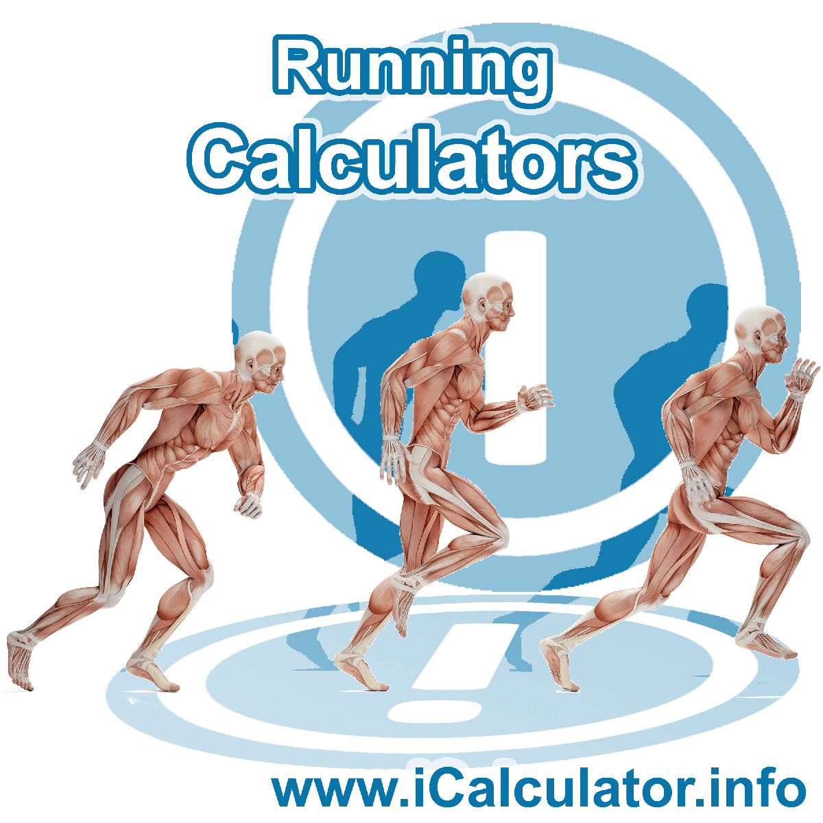 Running Calculator. This image shows an Running player playing running - by iCalculator