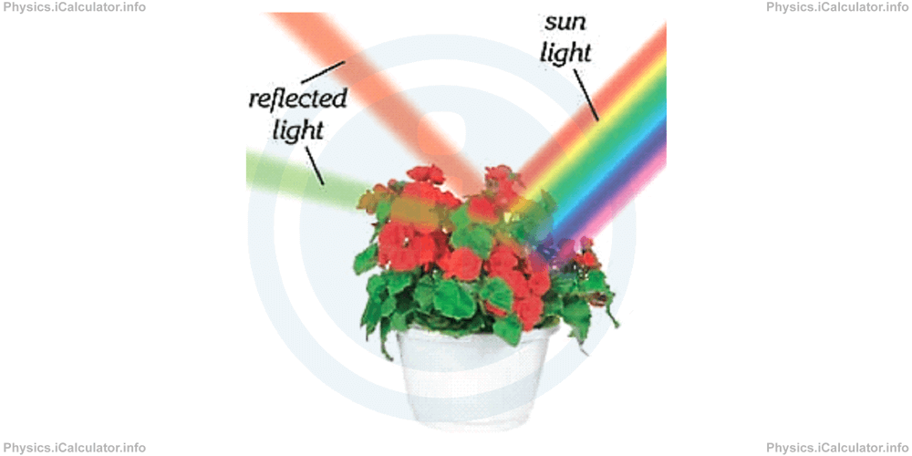 Physics Tutorials: This image provides visual information for the physics tutorial Polarization of Light